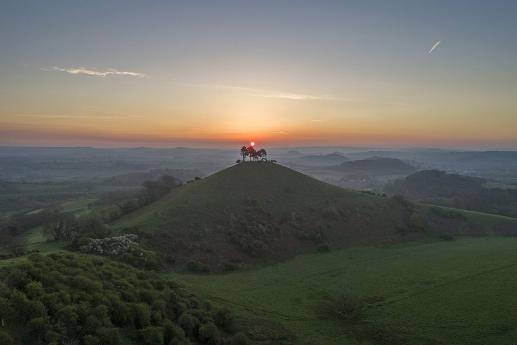 colmers hill in dorset at sunset