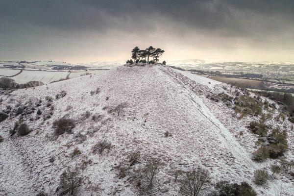 Colmer's Hill in Dorset