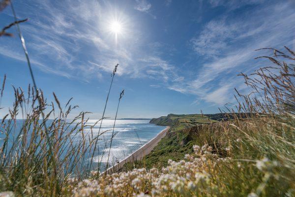 Highlands End Nature Trail in Dorset
