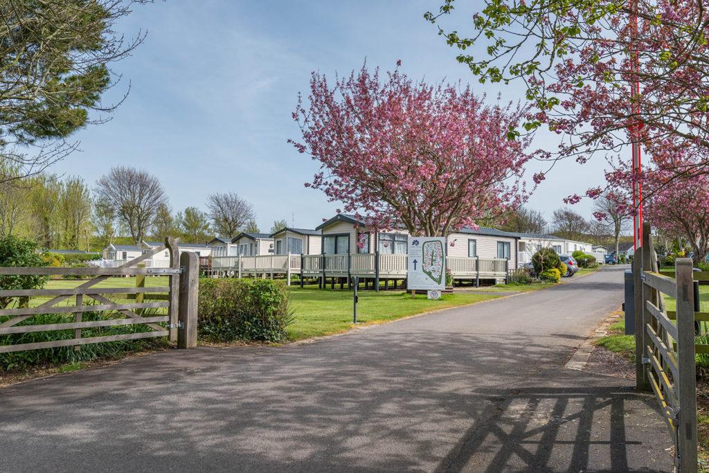 Larkfield Holiday Park in Dorset