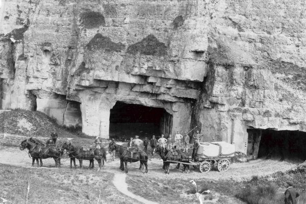 8 Horse and Cart at Beer Quarry Caves