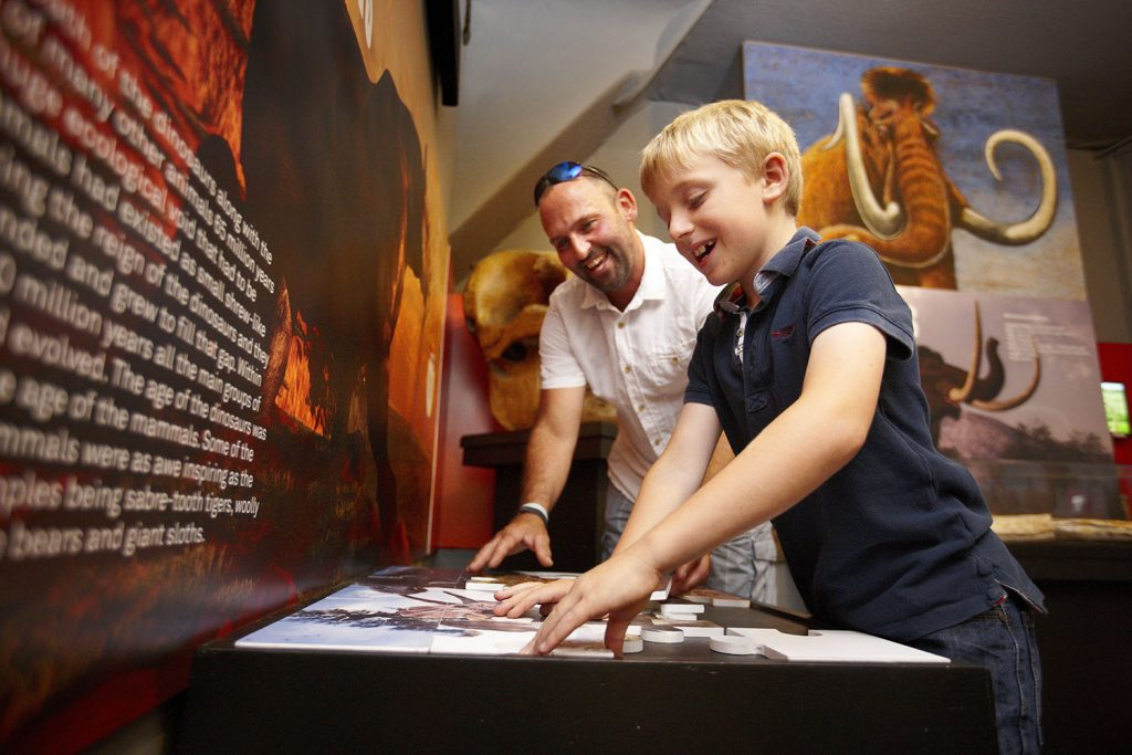The Dinosaur Museum, Dorchester Dorset.