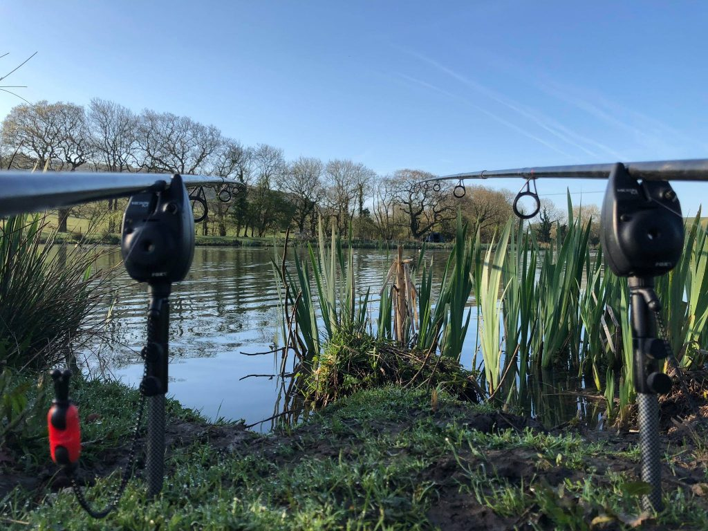 carp fishing in dorset